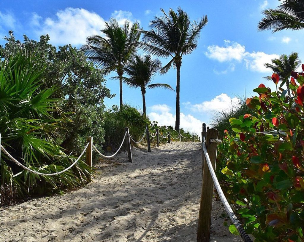 Miami is an exotic beach destination and bustling city