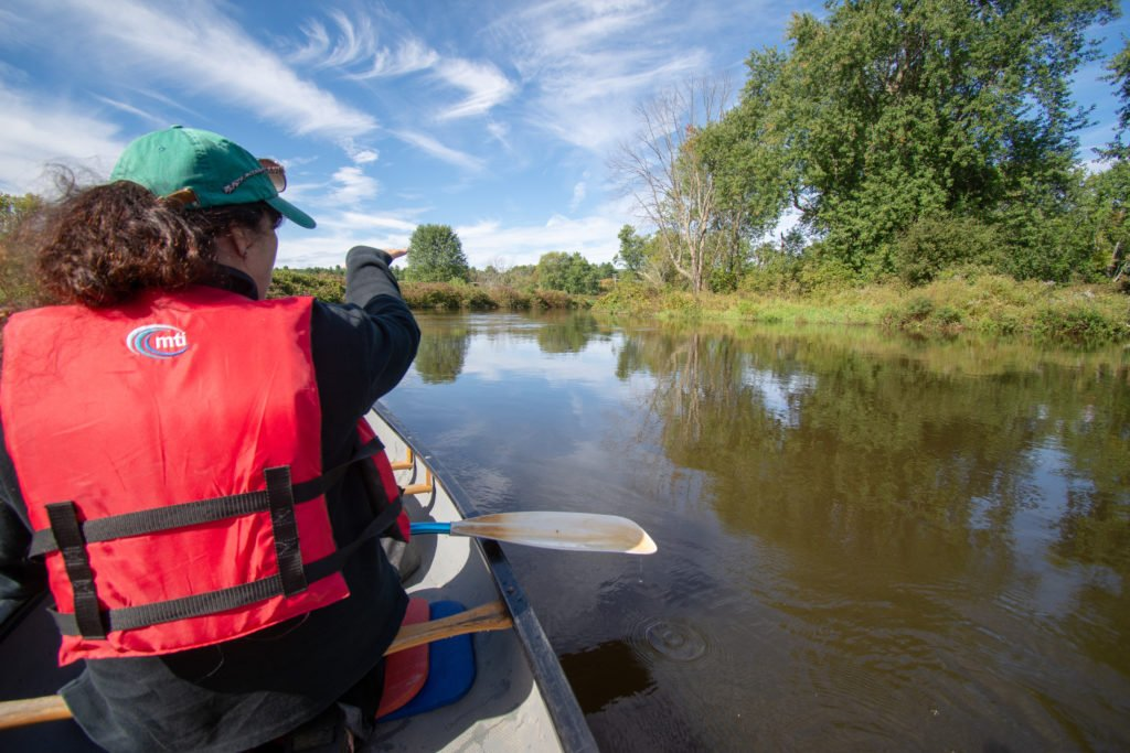 Berkshire Canoe Tours is among the best nature excursions in the Berkshires