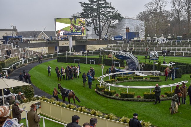 Ascot Racecourse Parade Ring, weekend itinerary and travel guide in Windsor