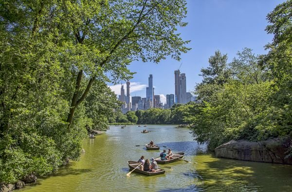 Central Park in New York City is one of the most beautiful and bucket list places in the US.