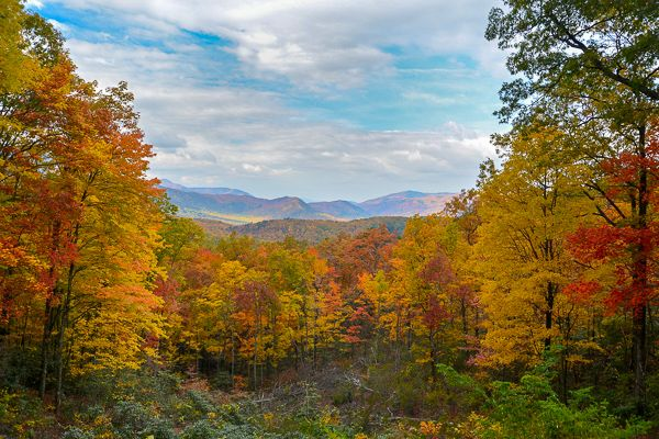 Great Smoky Mountains in Tennessee is one of the most beautiful, bucket list places in the US.