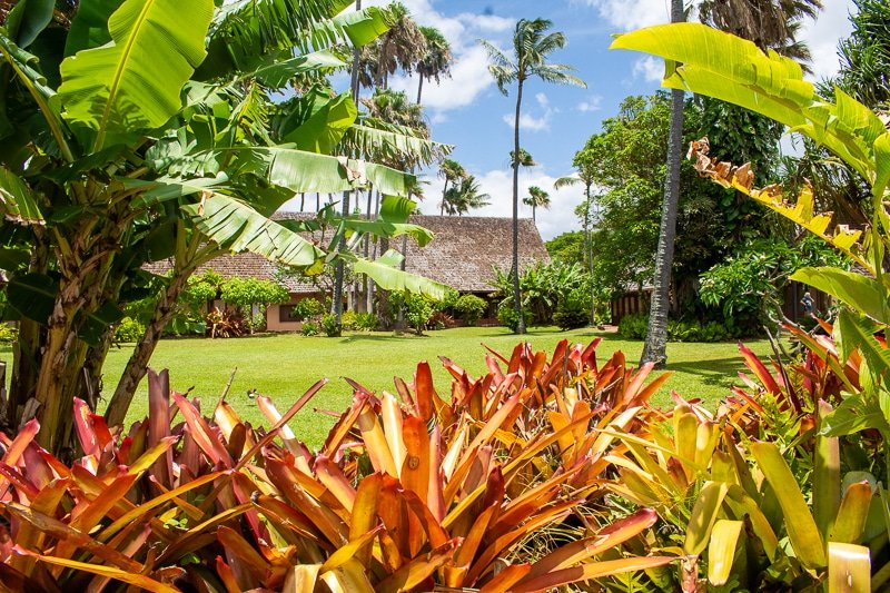 Molokai is a hidden gem. This travel guide provides tips and things to do to make the most of your stay on this island.