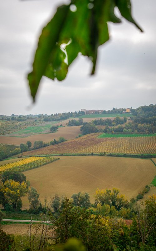 The country road leading up to Dozza is beautiful, where you'll pass farms, vineyards, and orchards, a scene reminiscent of Tuscany.
