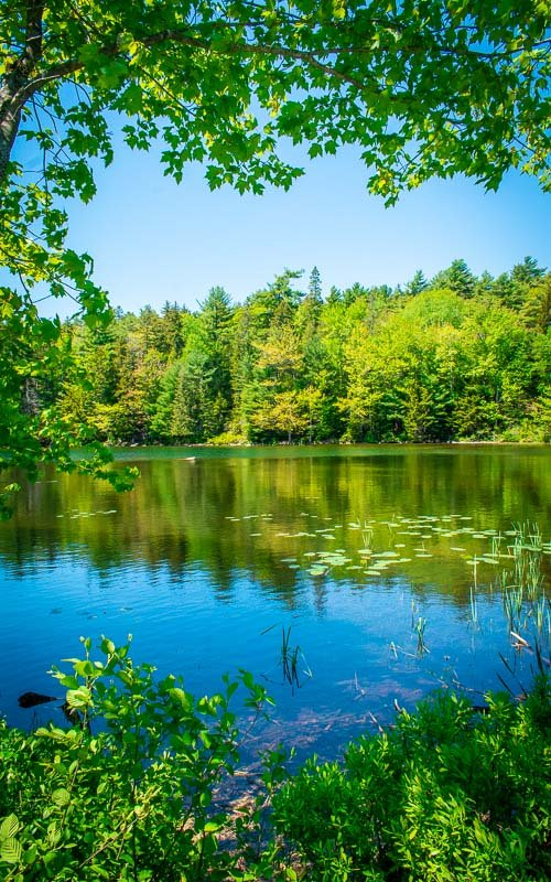 Eagle Lake is one of my favorite spots in Acadia National Park.