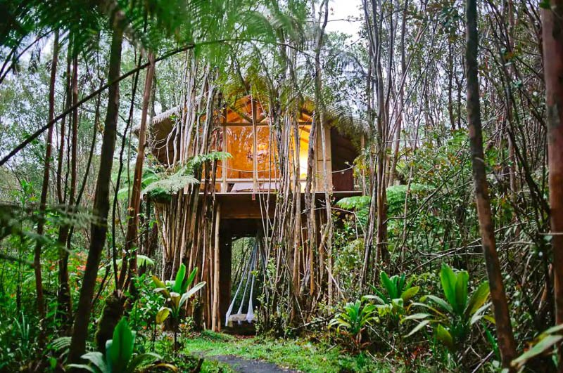This remote treehouse in a bamboo forest is top among the coolest and most unique Airbnbs in the US.
