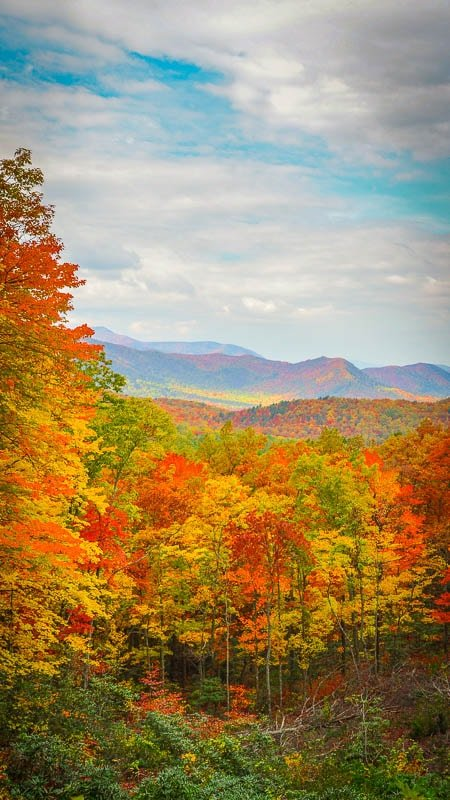 The fall foliage season reminds us why the Smoky Mountains are one of the best places to visit on the east coast.