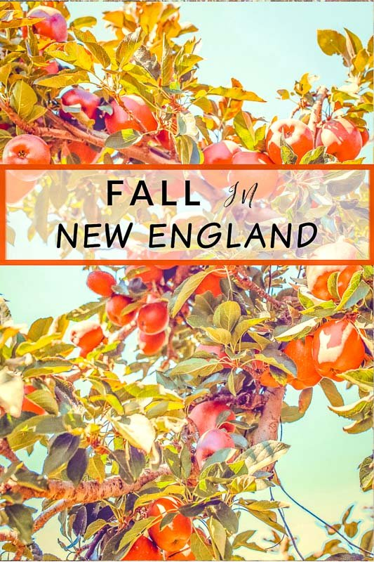 Fall in New England pinterest photo