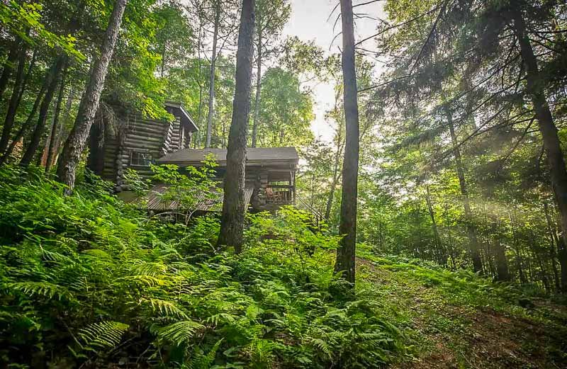 An airbnb accommodation in the middle of the forest in New England.