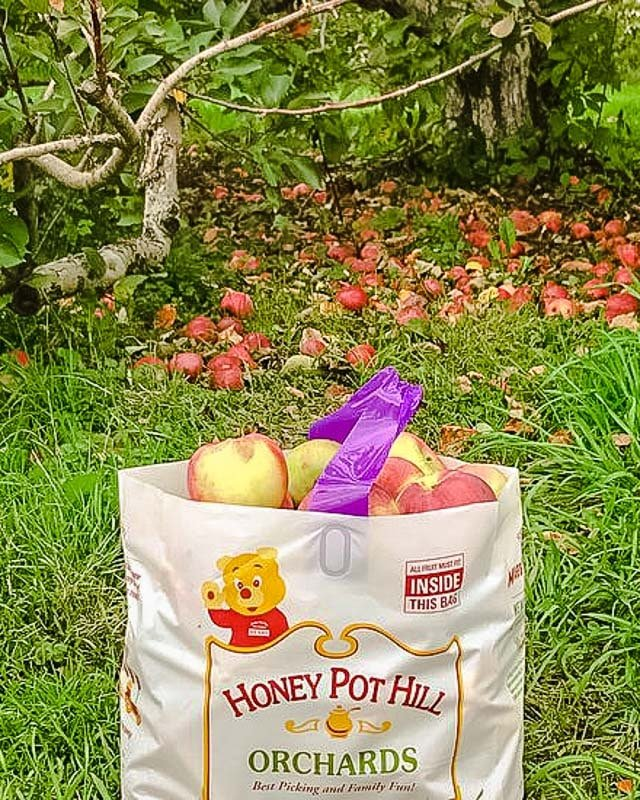 Honey Pot Hill Orchards in Stow, Massachusetts.
