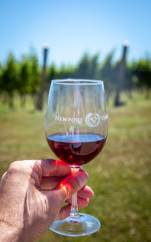 A weekend in Newport isn't complete without a visit to Newport Vineyards.