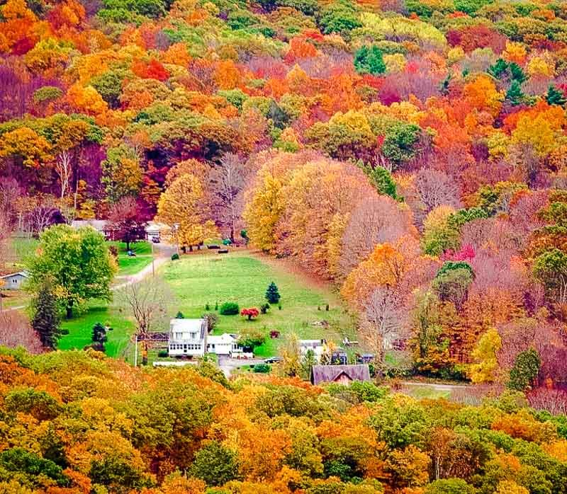 Litchfield Hills fall foliage.