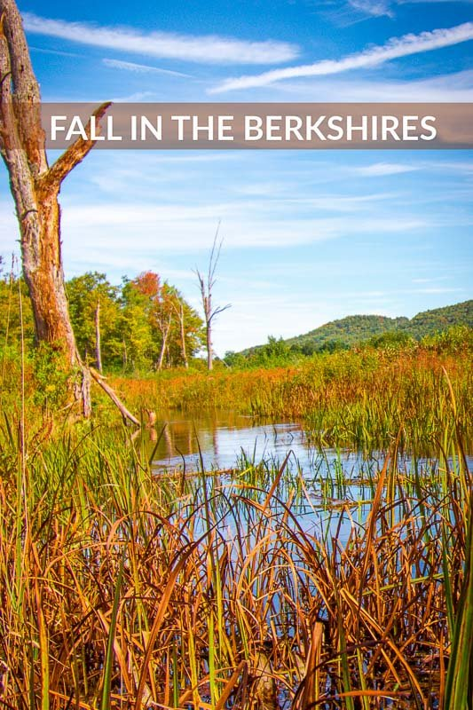 Berkshires in the fall pinterest image