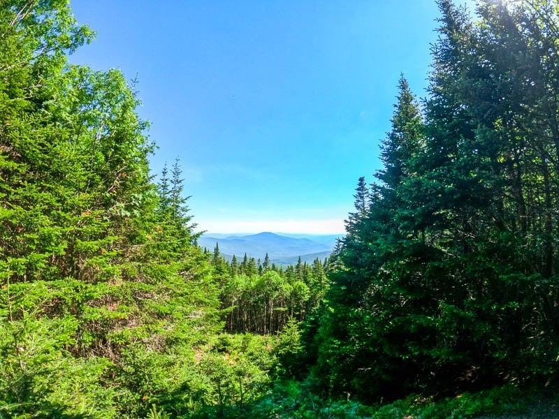 Mount Moosilauke White Mountains