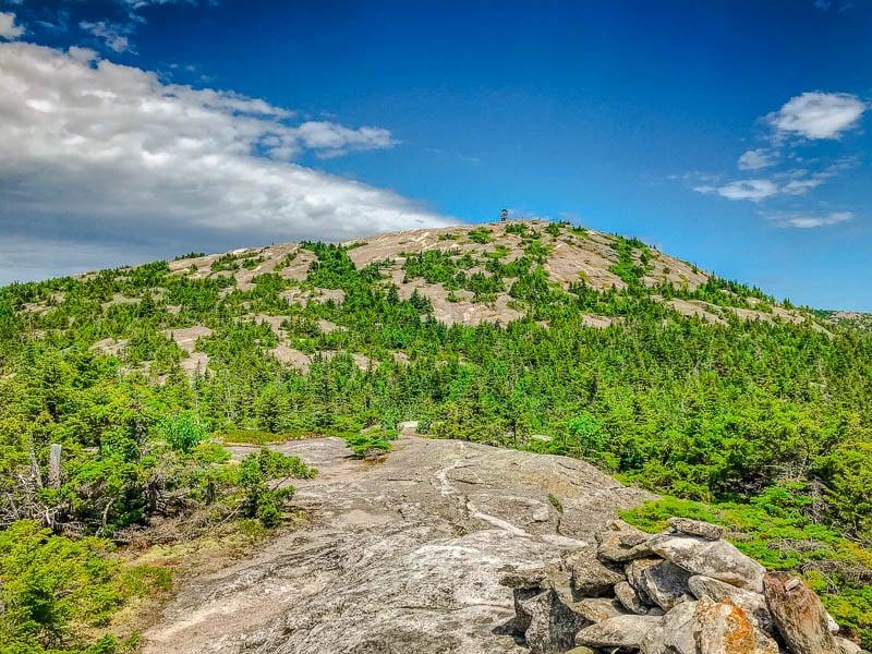 Mt. Cardigan Holt Trail Summit