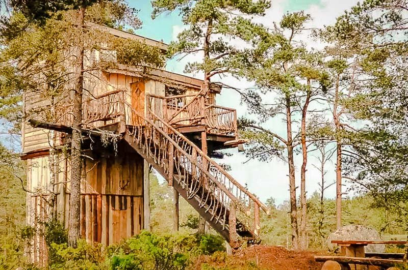 A majestic treehouse in Norway.