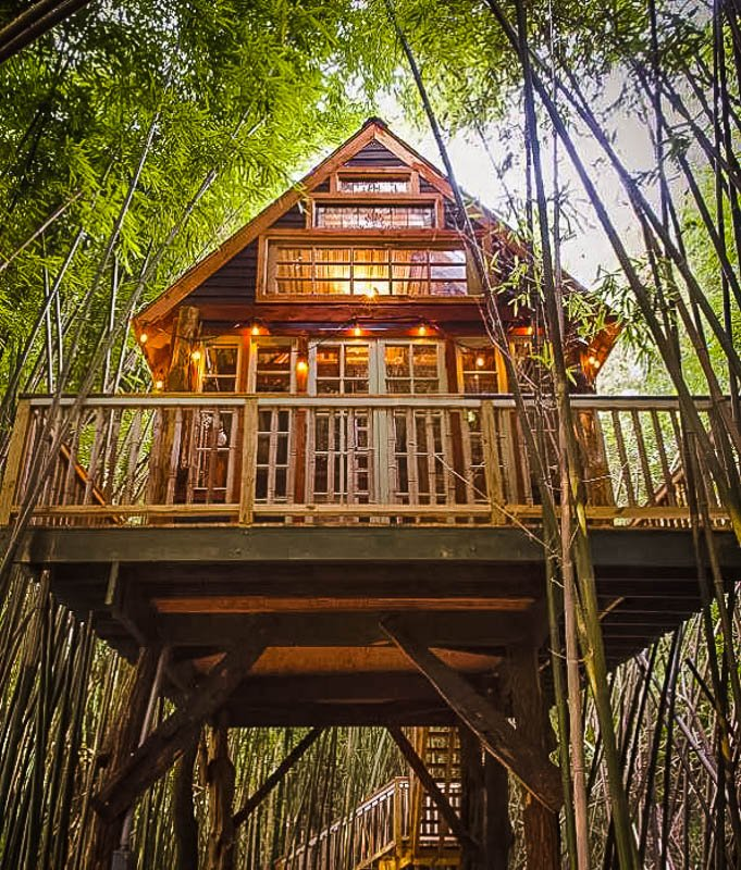 An amazing Airbnb treehouse in Georgia.