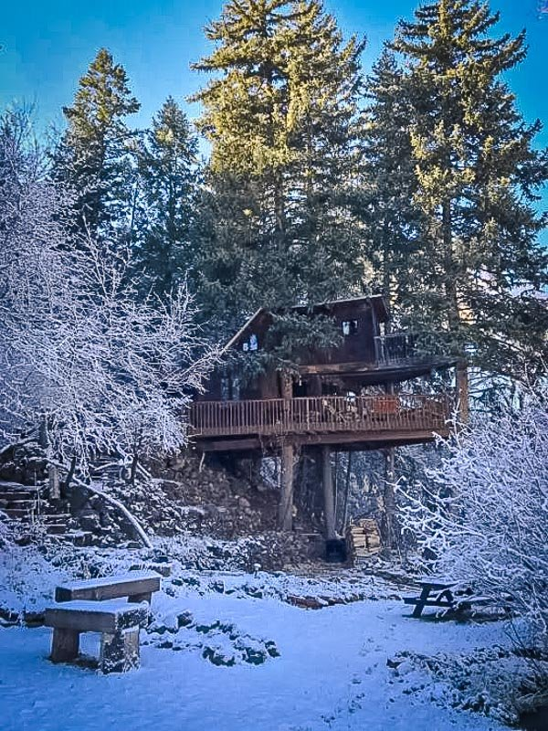 A unique treehouse accommodation in the mountains of CO
