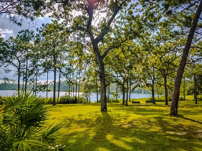 As far as national forests go, this one is on the quiet side. It's easily one of the best hidden gems in Florida
