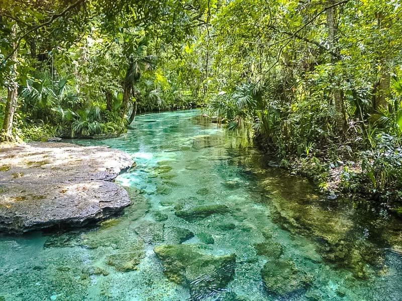 Kelly Rock Springs is definitely one of Florida's best hidden gems.