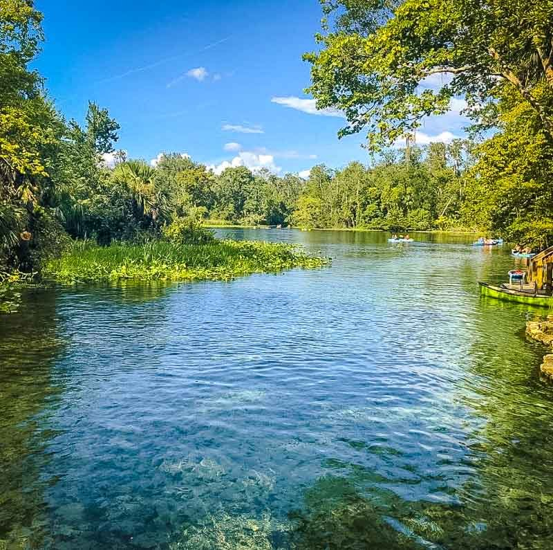 Wekiwa Springs State Park is one of the most unique places to visit in Florida.