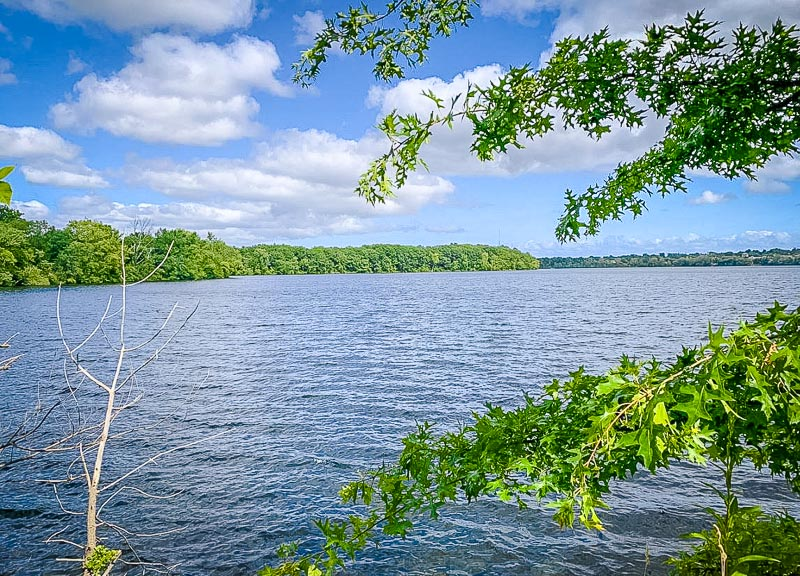 The Fresh Pond Reservation is a beautiful place to visit year-round.