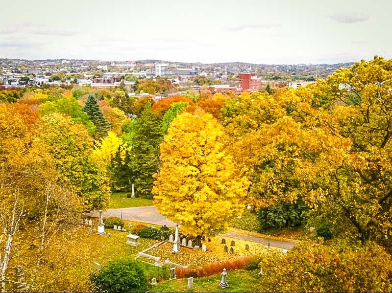 Mount Auburn Cemetery is especially photogenic during the fall.