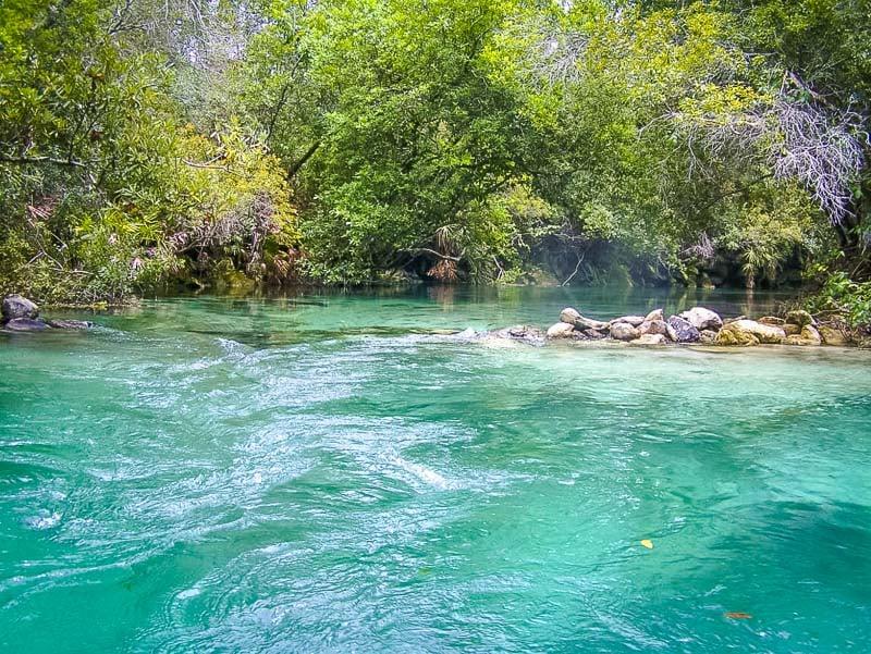 Weeki Wachee State Park is one of Florida's best hidden gems.