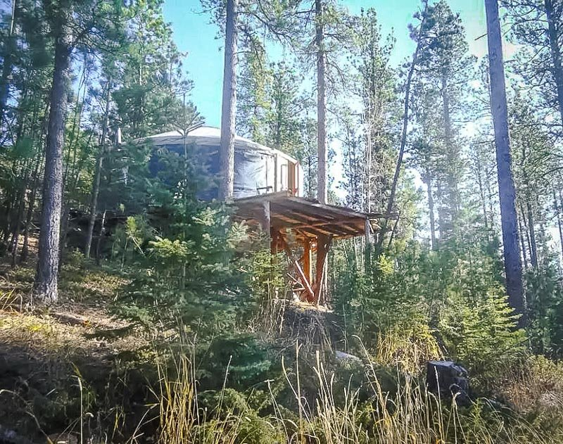 An authentic yurt tucked in the wilderness