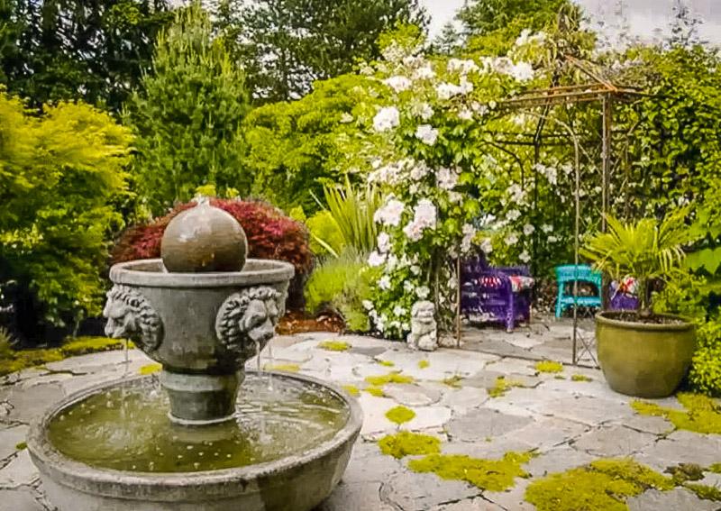Garden in the backyard