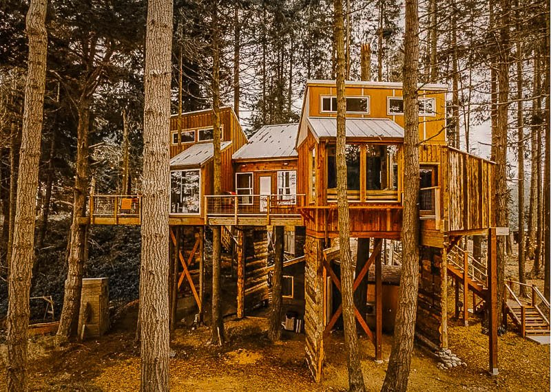 One of the coolest treehouse Airbnbs in Washington State.