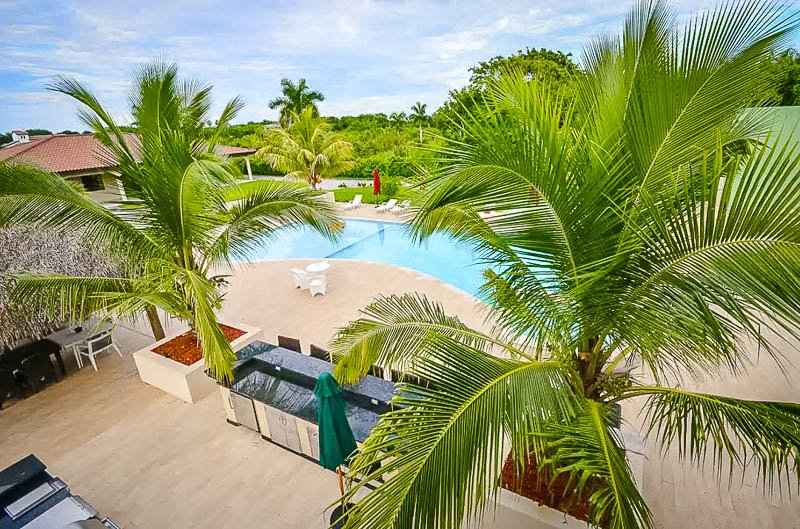 Pool area with palm trees