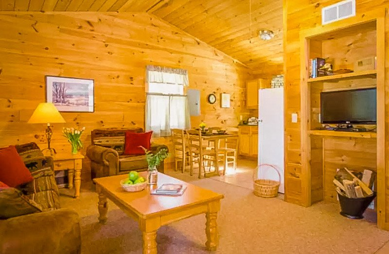 Rustic interior decorations and furnishings