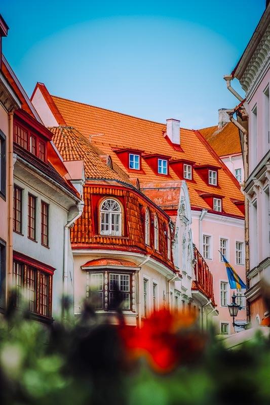 Tallinn has such a vibrant personality