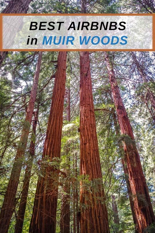 Best Airbnbs in Muir Woods California Pinterest Image Pin