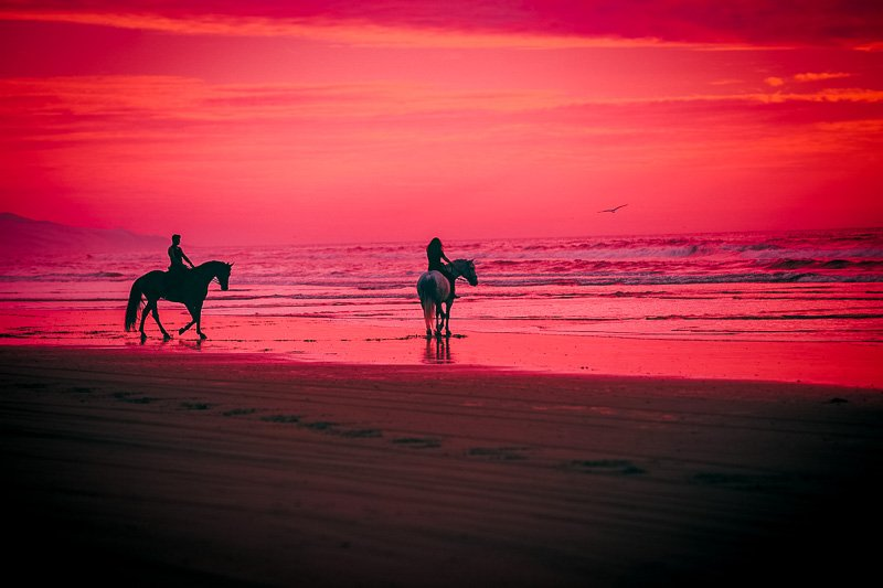 Horseback riding at sunset is one of the most unique bucket list ideas out there.