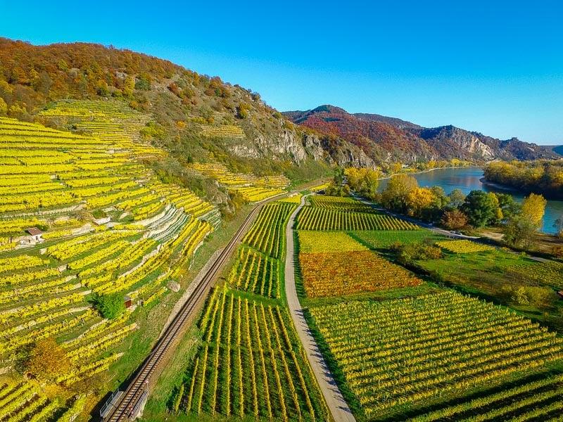 Organic farming through WWOOF
