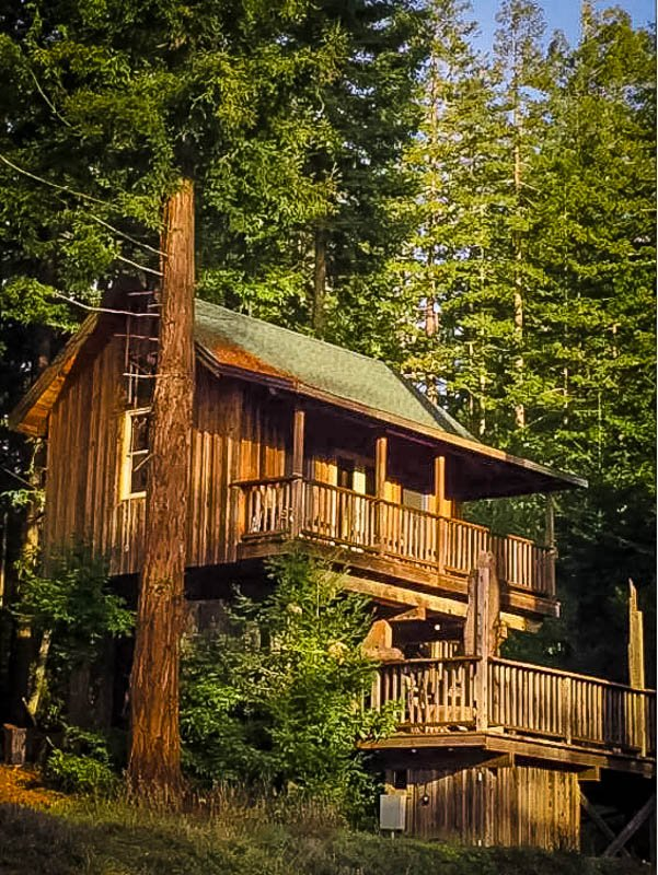 A treehouse cabin for rent in California.