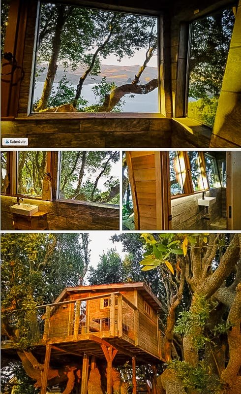 Beautiful views around the California treehouse rental.