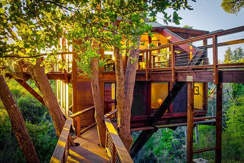 Multi-floor accommodation made from trees