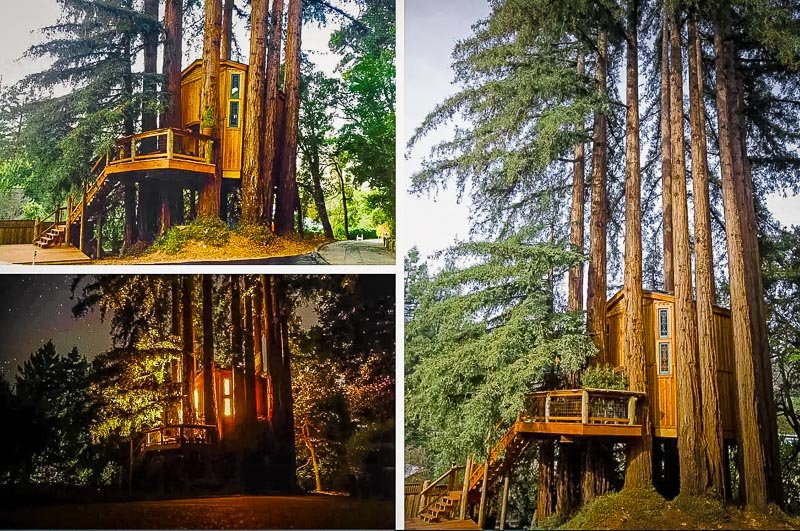 A luxury treehouse in the Redwoods of California.