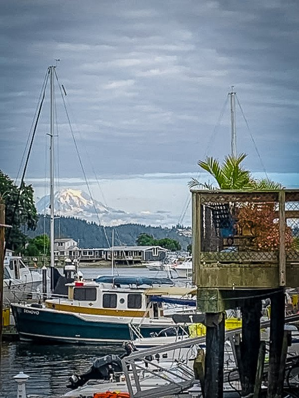 Houseboat with a view of the Washington countryside and Mt. Rainier