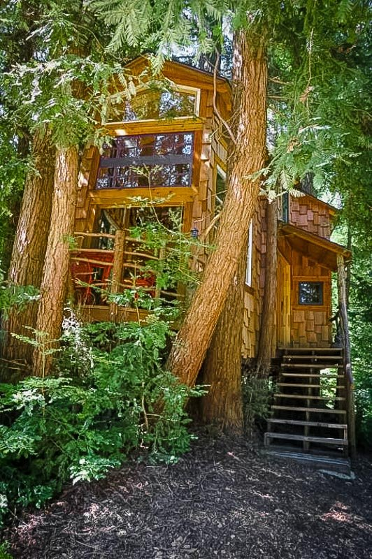 A charming Airbnb treehouse in California on 72 acres of land