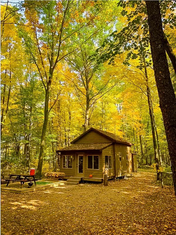 This Airbnb tiny house in Michigan is the perfect place for leaf peeping.