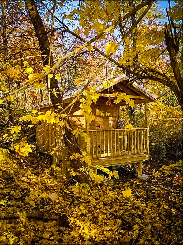 This tiny cabin in Maine is perfect for chasing the fall colors.