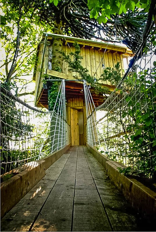 An Ireland Airbnb treehouse like no other