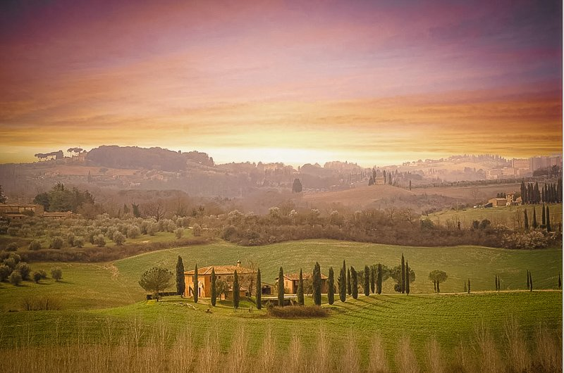 A beautiful Airbnb in Tuscany on a vineyard