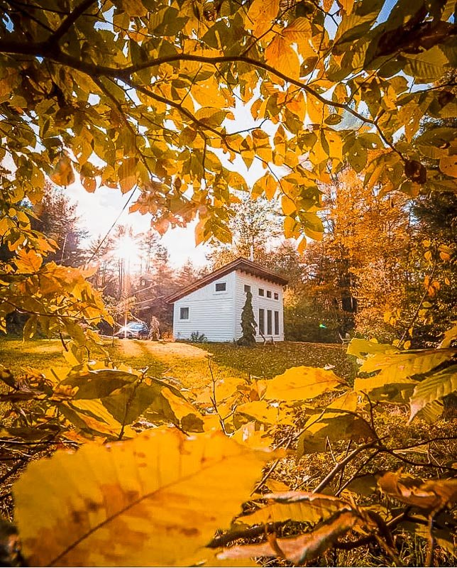 Tiny house cottage in VT enveloped by fall foliage.
