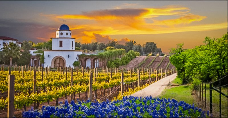 For wine lovers, Fredericksburg TX is considered one of the best hidden gems in the US.