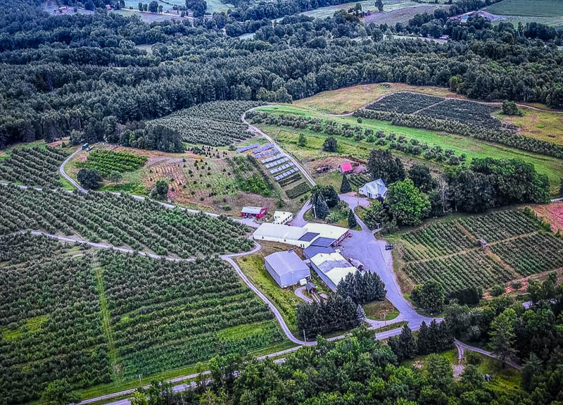 A unique apple picking farm in VT with views of the Green Mountains