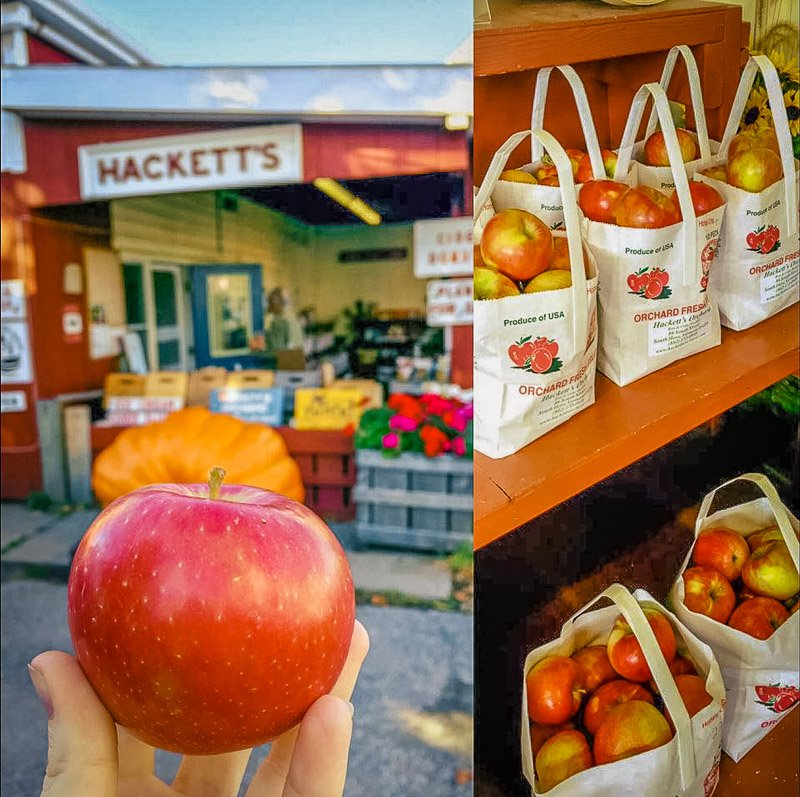 A top apple farm in Vermont with fresh apples and other produce